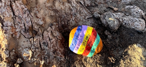 one of the many rocks kids in town are leaving like easter eggs of hope near trails in Penticton