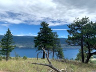 Looking west down on Okanagan lake, I have been continuing the regular climbs up Giant's head, it's a workout for sure! But what other gym has chipmunks, hawks, and views like this?